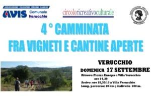 4^ Camminata fra vigneti e cantine aperte - Avis Comunale Verucchio @ Verucchio | Villa Verucchio | Emilia-Romagna | Italia